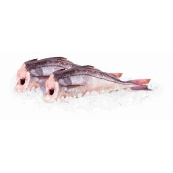 Пикша охлажденная